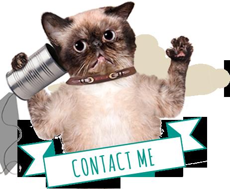 Tubes Gatos.... - Página 4 Contact